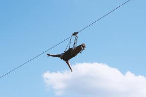 ziplining through sky